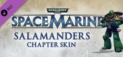 Warhammer 40,000: Space Marine - Salamanders Veteran Armour Set для STEAM
