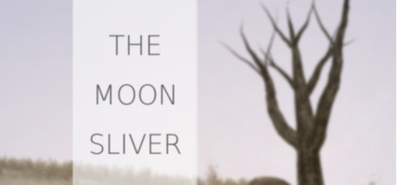 Купить The Moon Sliver